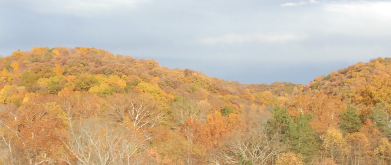 Fall Color Hike at Kleinmaier State Nature Preserve